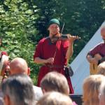 Quand Taratata fête la musique celte !
