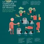 Une infographie sur le gaspillage alimentaire en France