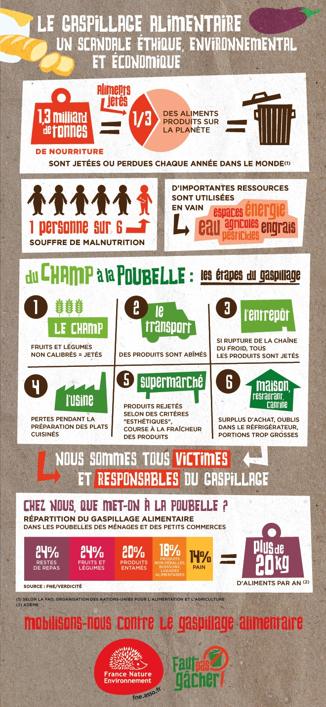 gaspillage-alimentaire-infographie-fne