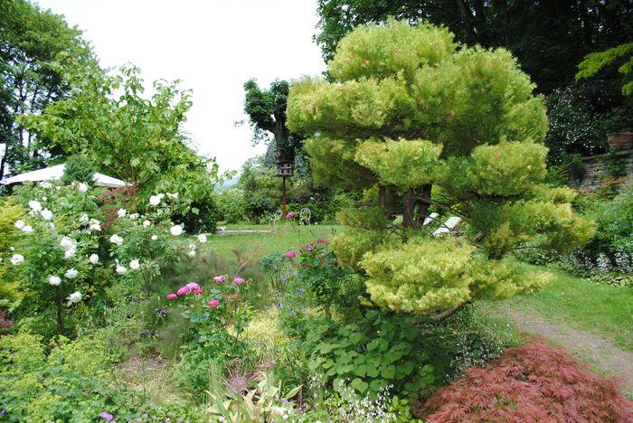 5 jardins lyonnais cach s et m connus lyon littlecelt for Jardin zoologique de lyon